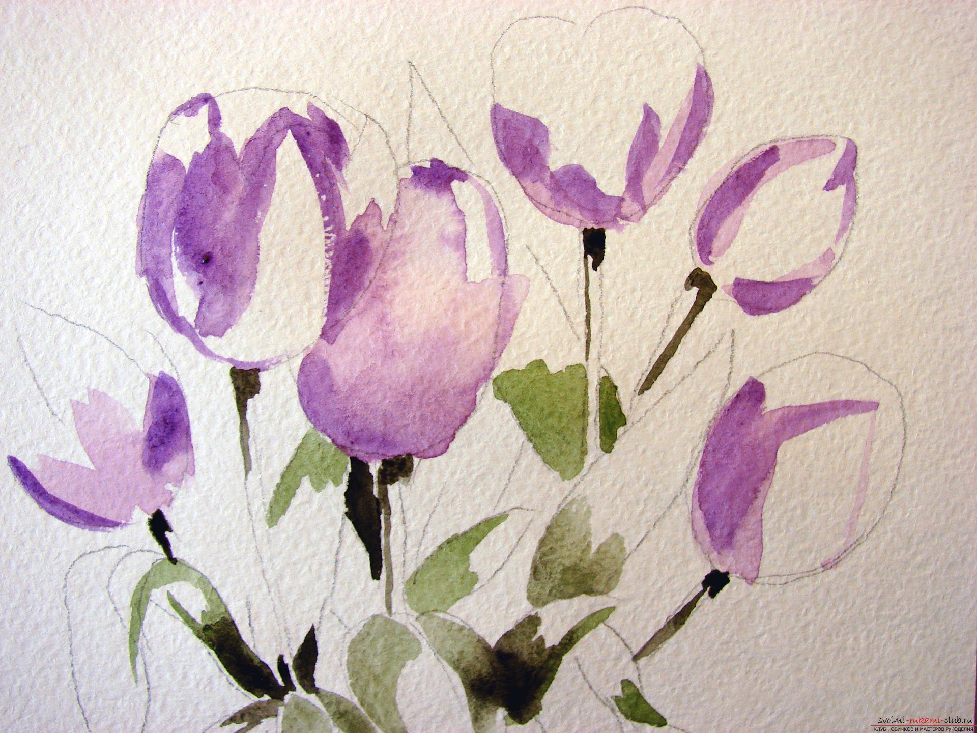 Мастер-класс по рисованию с фото научит как нарисовать цветы, подробно описав как рисуются тюльпаны поэтапно.. Фото №5