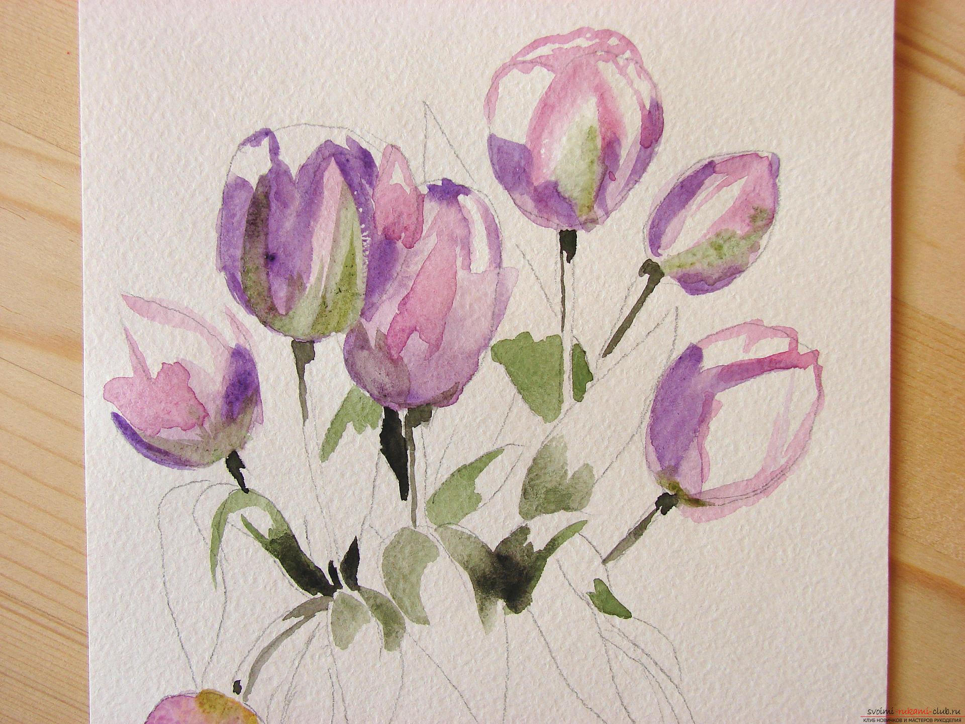 Мастер-класс по рисованию с фото научит как нарисовать цветы, подробно описав как рисуются тюльпаны поэтапно.. Фото №7