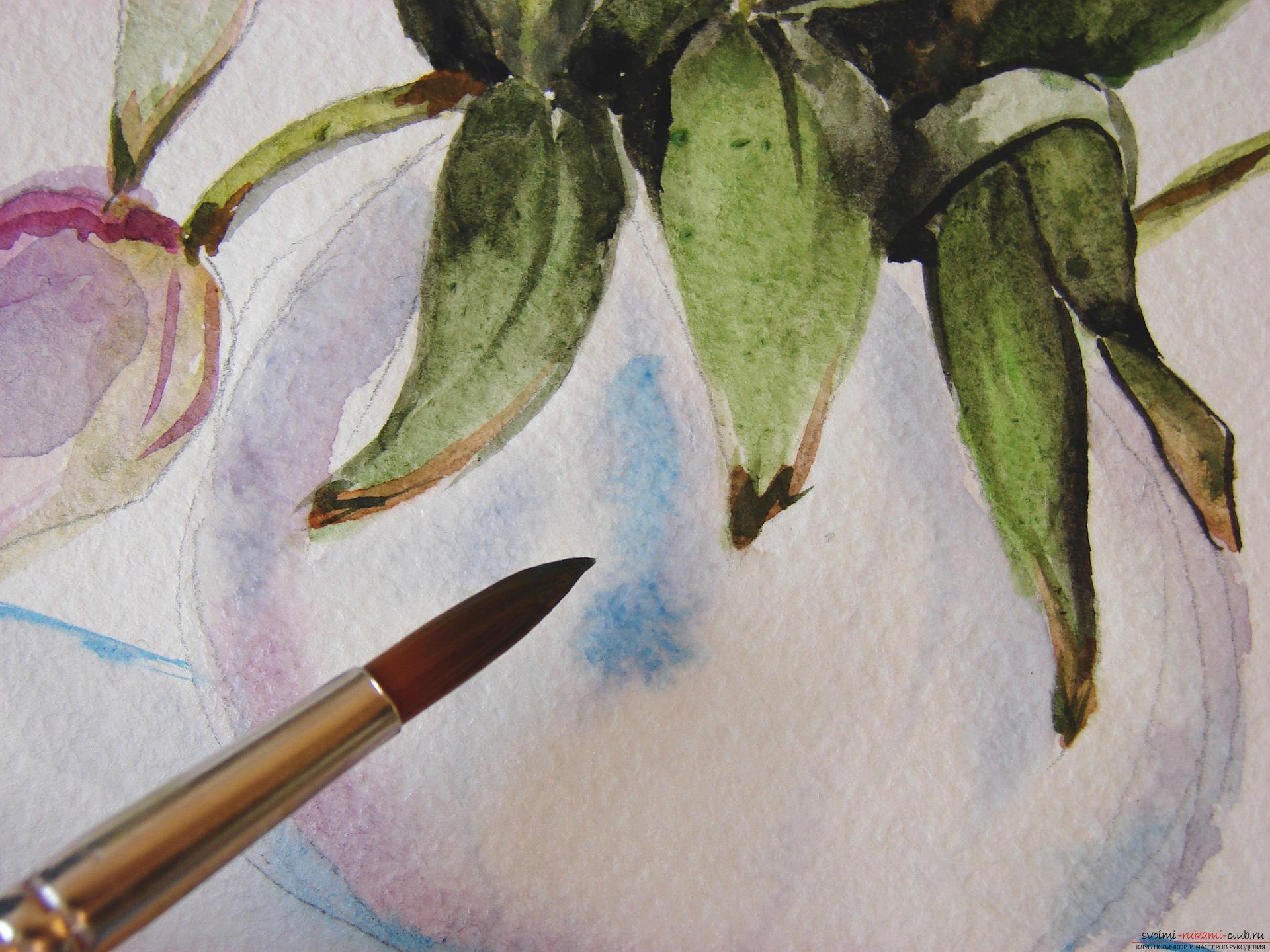 Мастер-класс по рисованию с фото научит как нарисовать цветы, подробно описав как рисуются тюльпаны поэтапно.. Фото №21