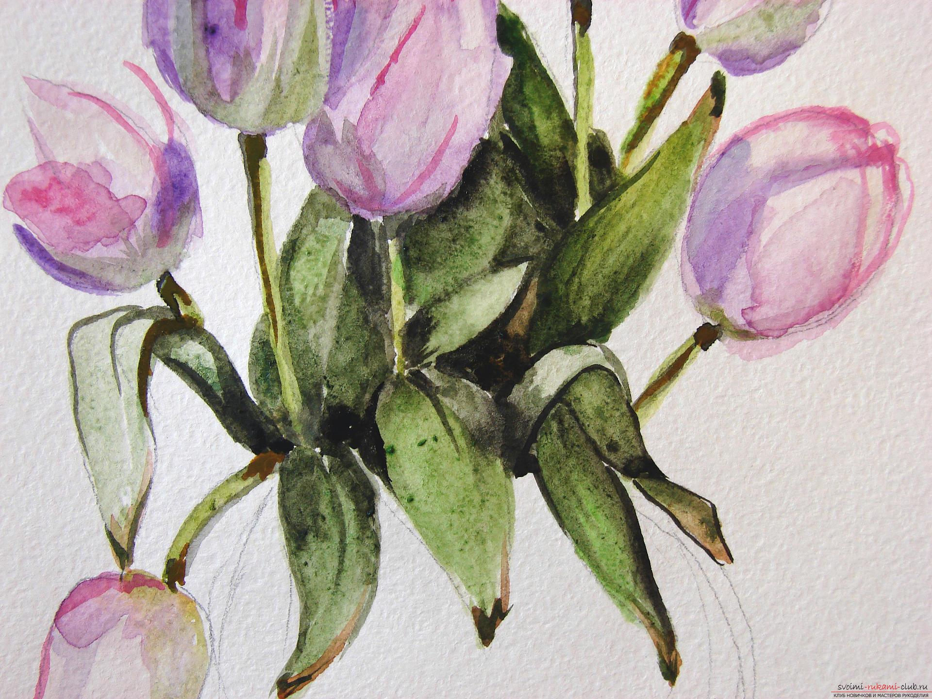 Мастер-класс по рисованию с фото научит как нарисовать цветы, подробно описав как рисуются тюльпаны поэтапно.. Фото №15
