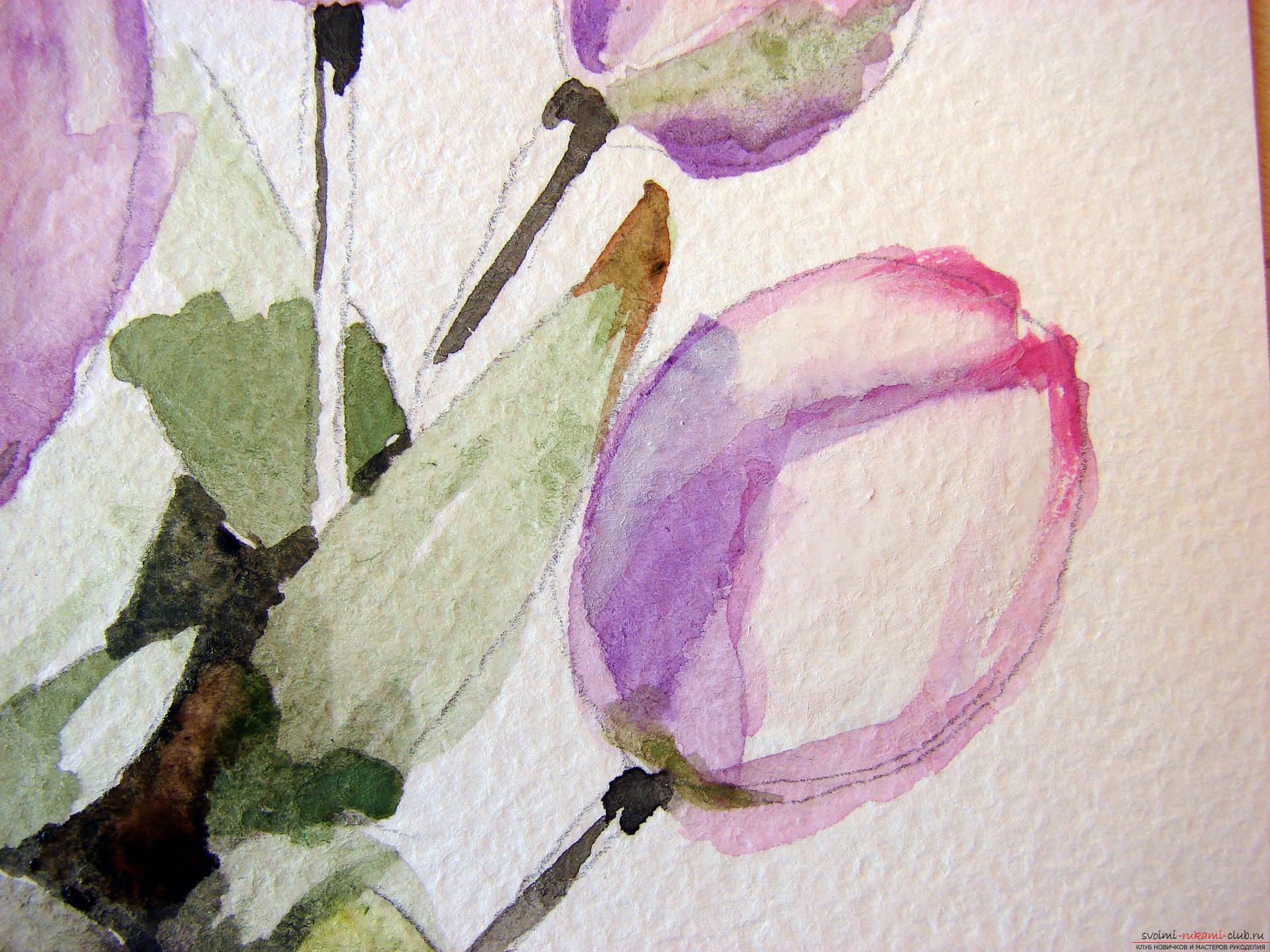 Мастер-класс по рисованию с фото научит как нарисовать цветы, подробно описав как рисуются тюльпаны поэтапно.. Фото №12
