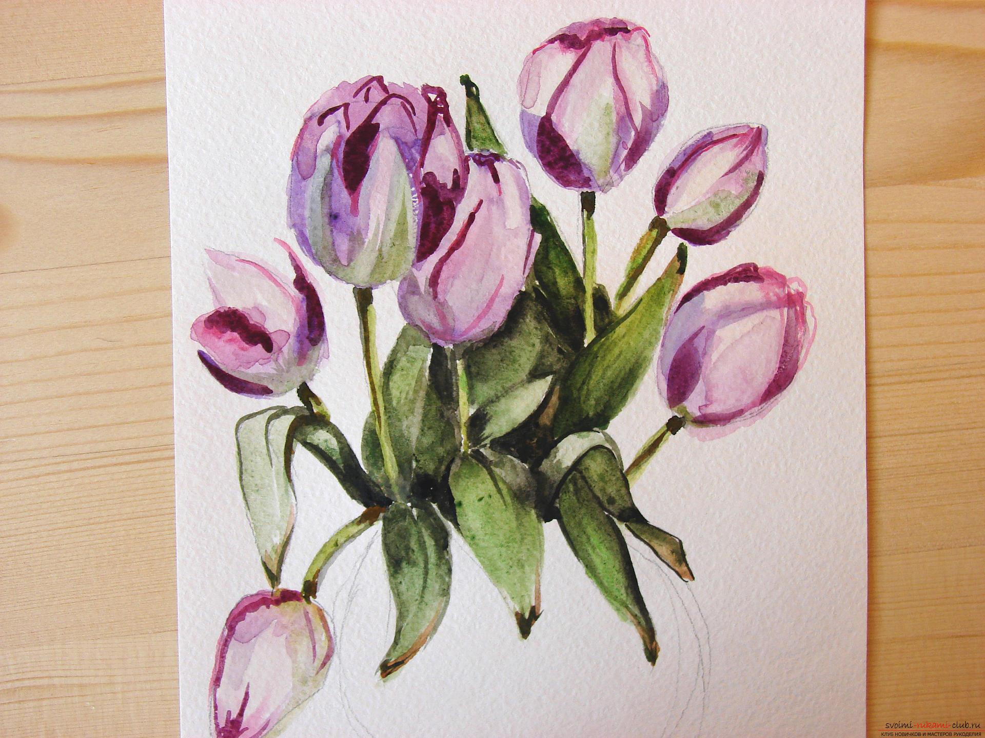 Мастер-класс по рисованию с фото научит как нарисовать цветы, подробно описав как рисуются тюльпаны поэтапно.. Фото №18