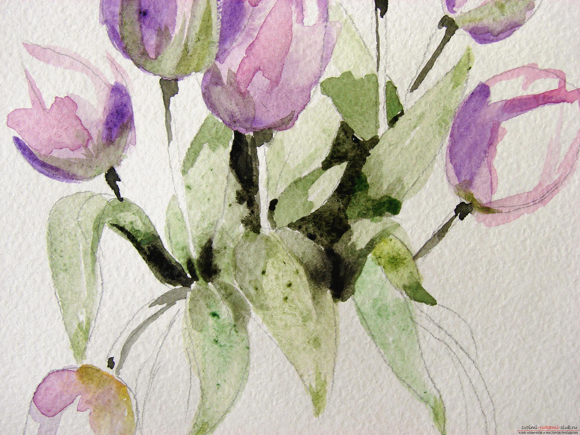 Мастер-класс по рисованию с фото научит как нарисовать цветы, подробно описав как рисуются тюльпаны поэтапно.. Фото №9