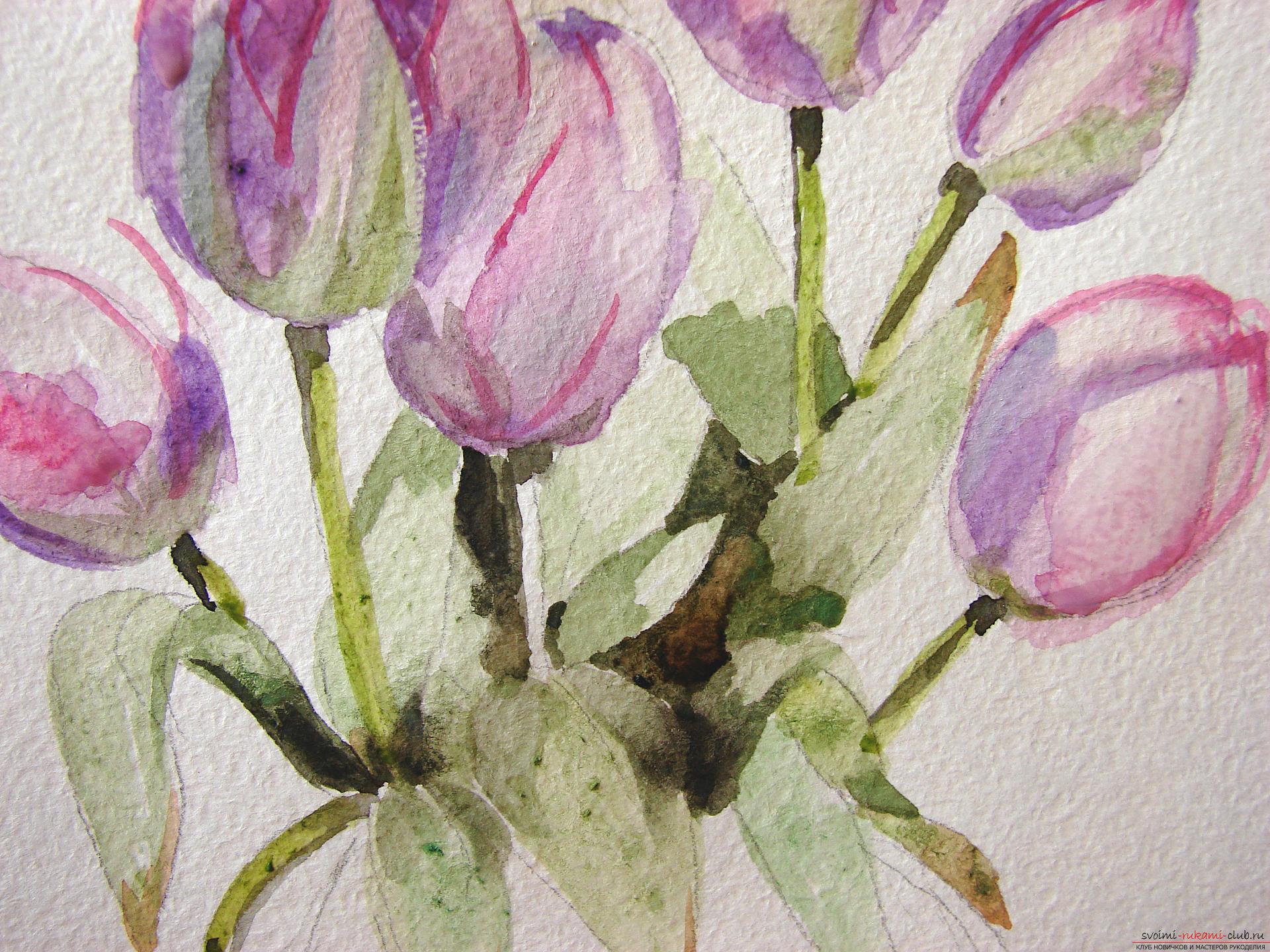 Мастер-класс по рисованию с фото научит как нарисовать цветы, подробно описав как рисуются тюльпаны поэтапно.. Фото №14