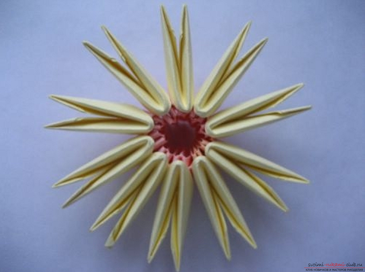 модульное оригами ромашка. Фото №17