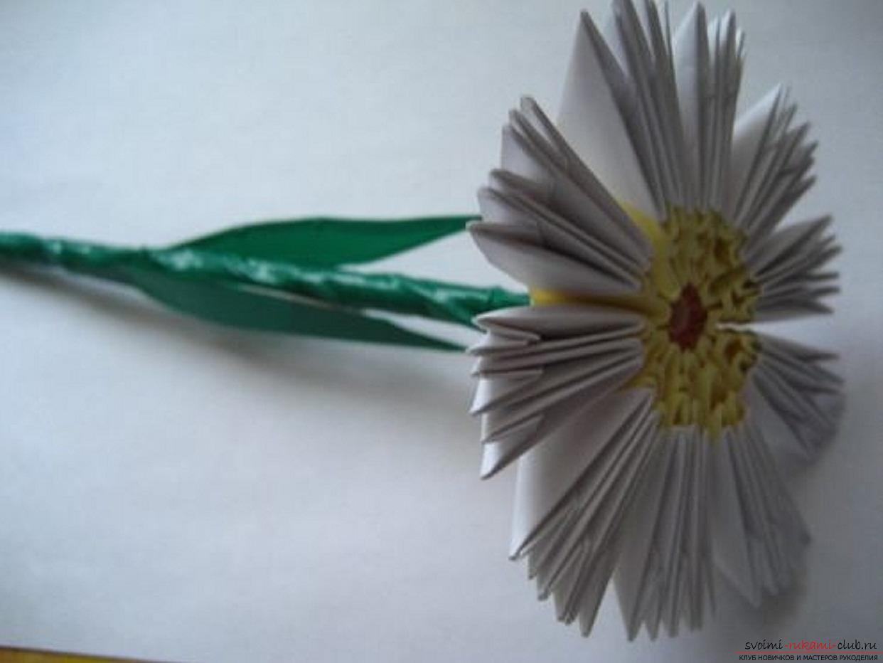 модульное оригами ромашка. Фото №24