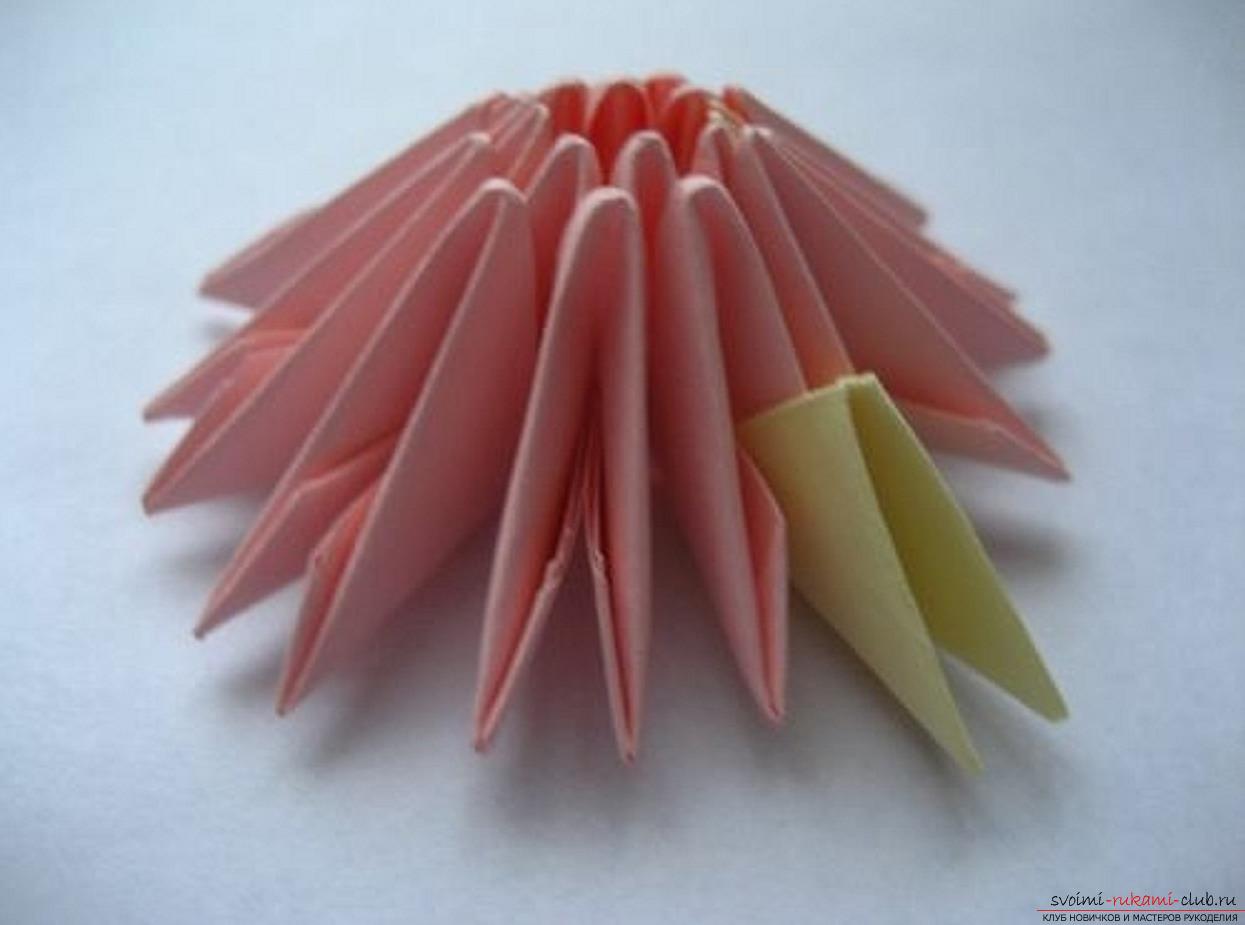 модульное оригами ромашка. Фото №15