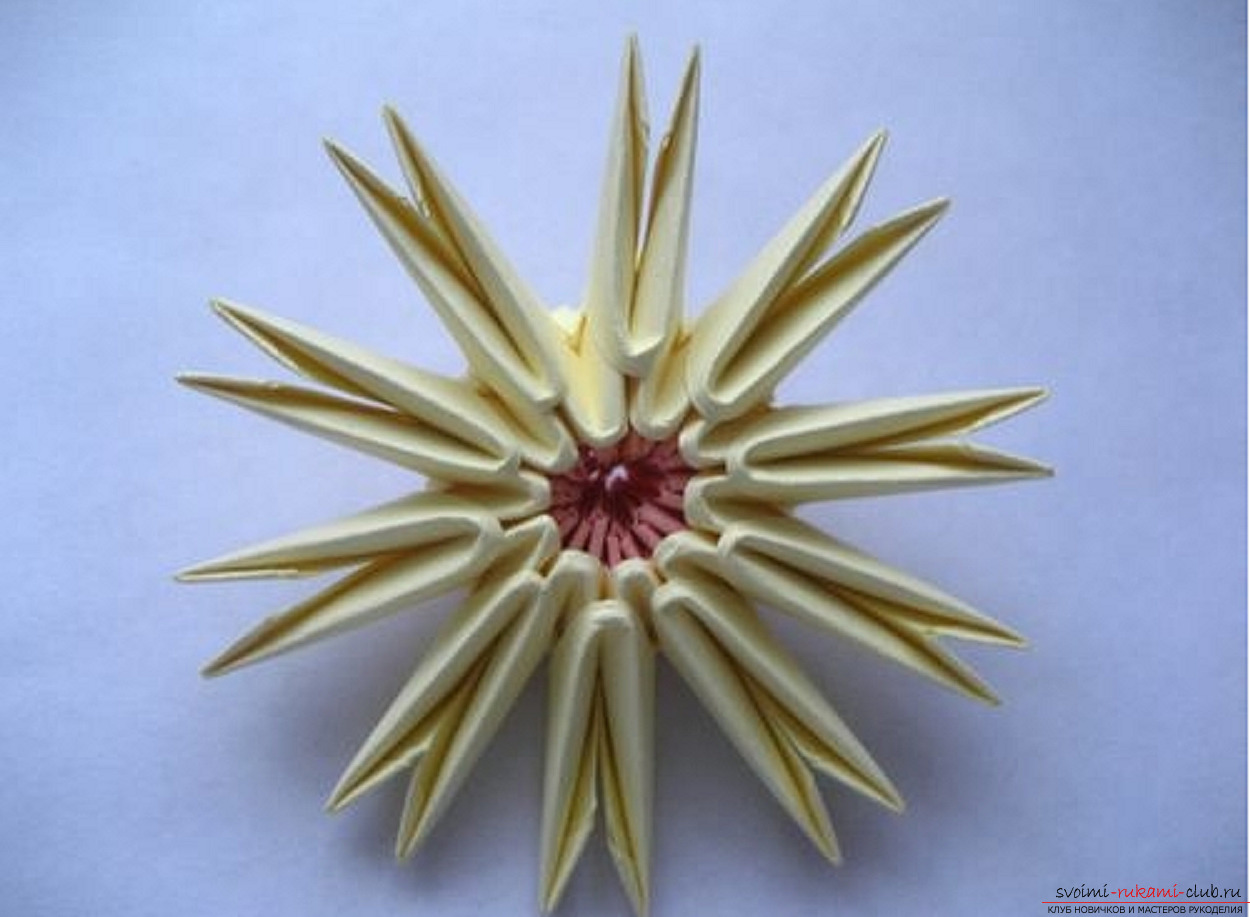 модульное оригами ромашка. Фото №18