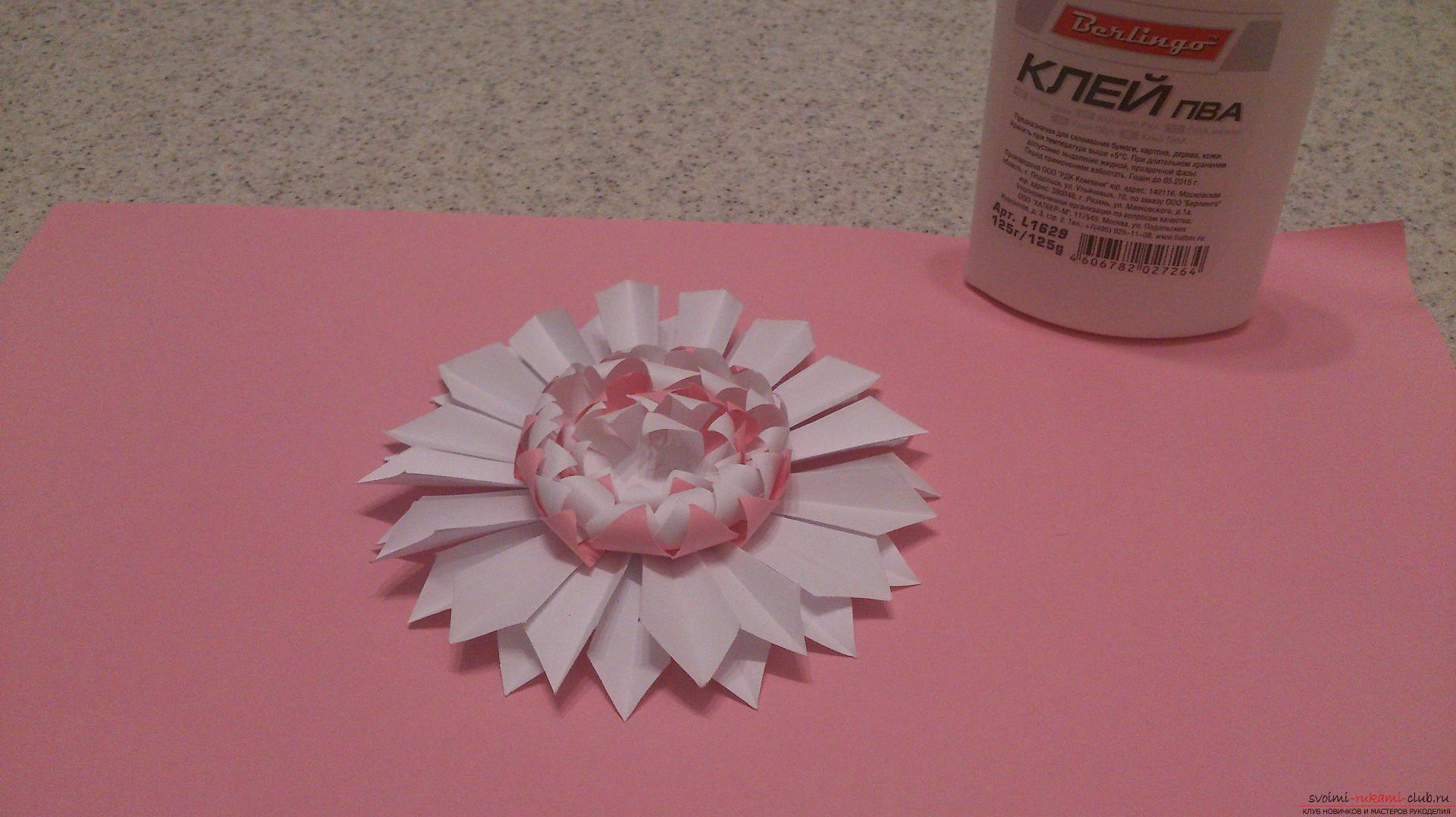 Поделки в технике бумагопластики очень разнообразны, предлагаем сделать картину из цветов, а цветы из бумаги изготовим своими руками.. Фото №14