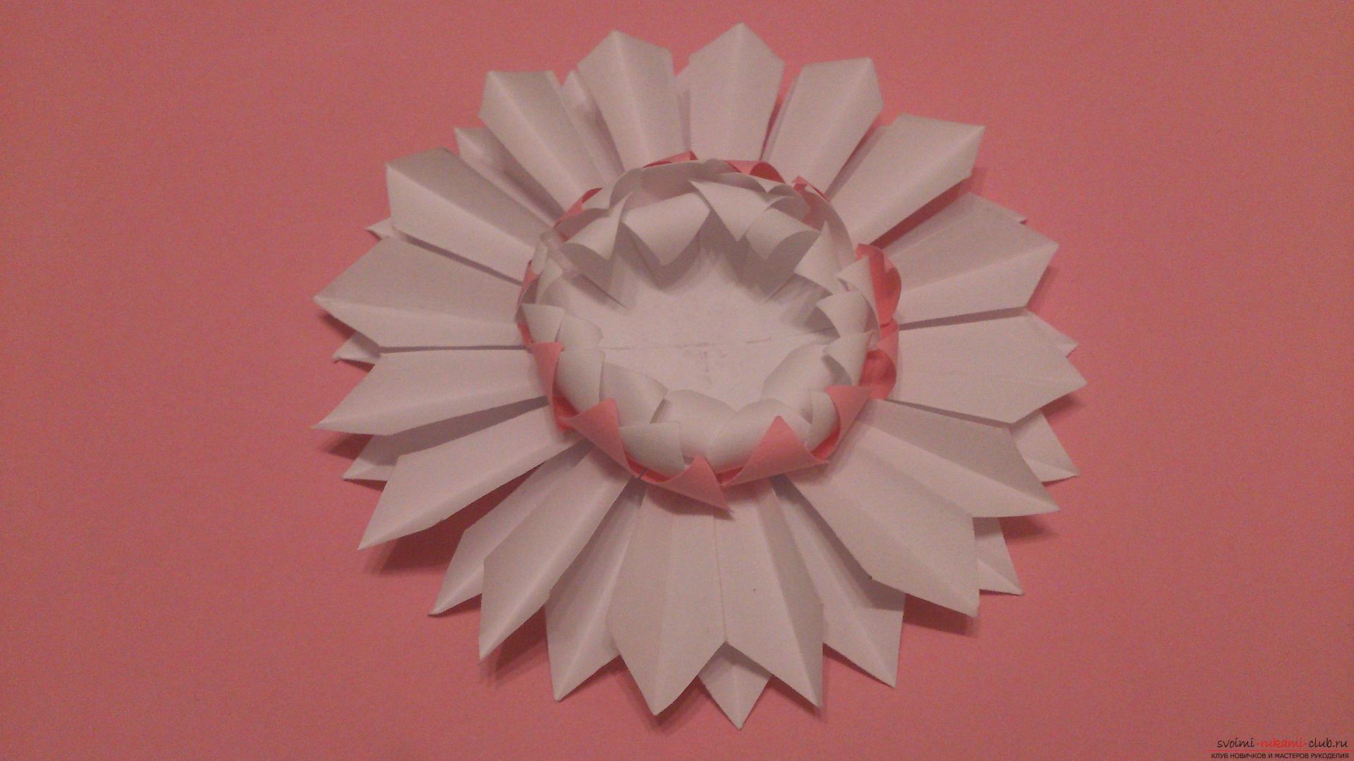 Поделки в технике бумагопластики очень разнообразны, предлагаем сделать картину из цветов, а цветы из бумаги изготовим своими руками.. Фото №11
