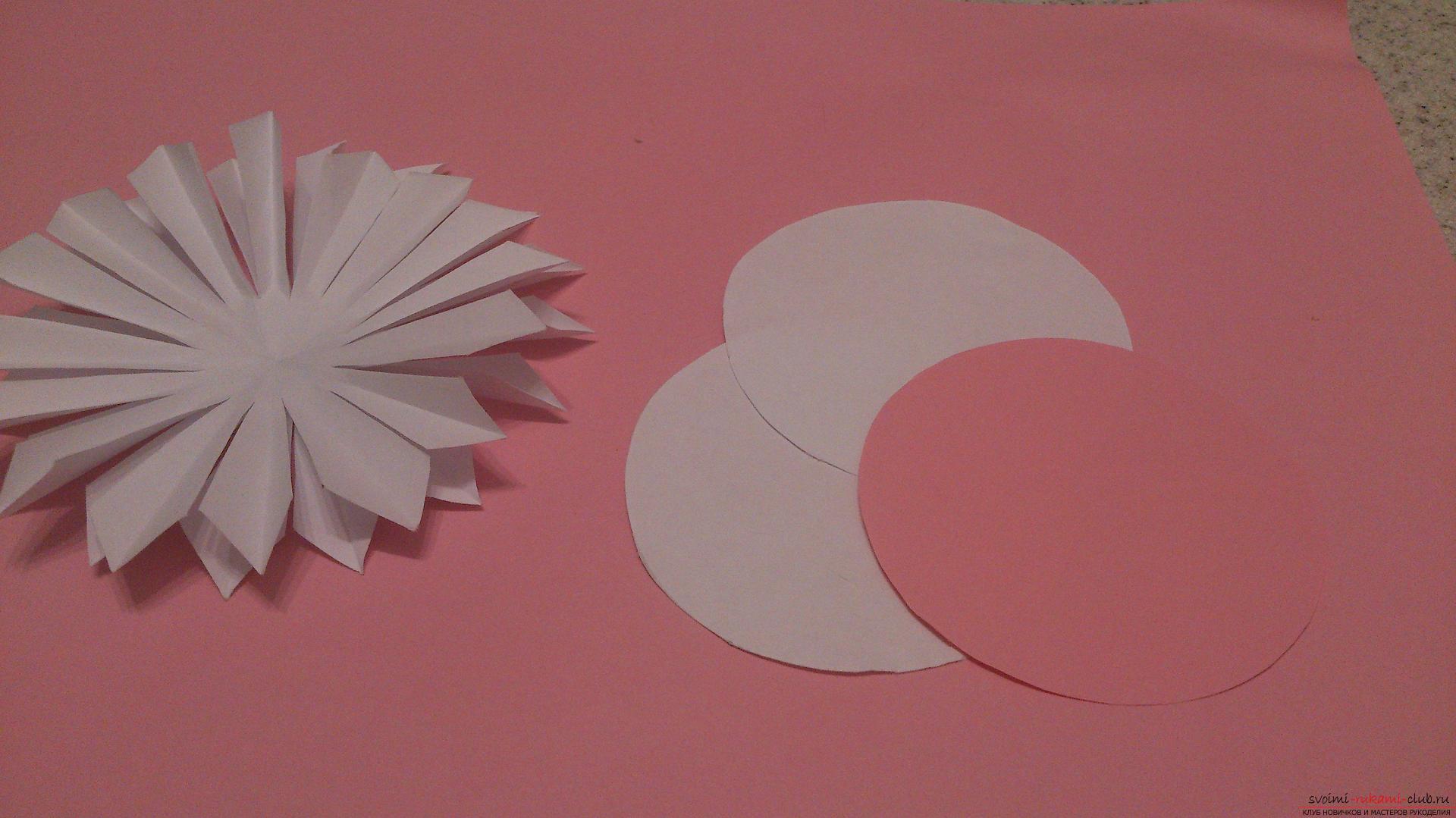 Поделки в технике бумагопластики очень разнообразны, предлагаем сделать картину из цветов, а цветы из бумаги изготовим своими руками.. Фото №8