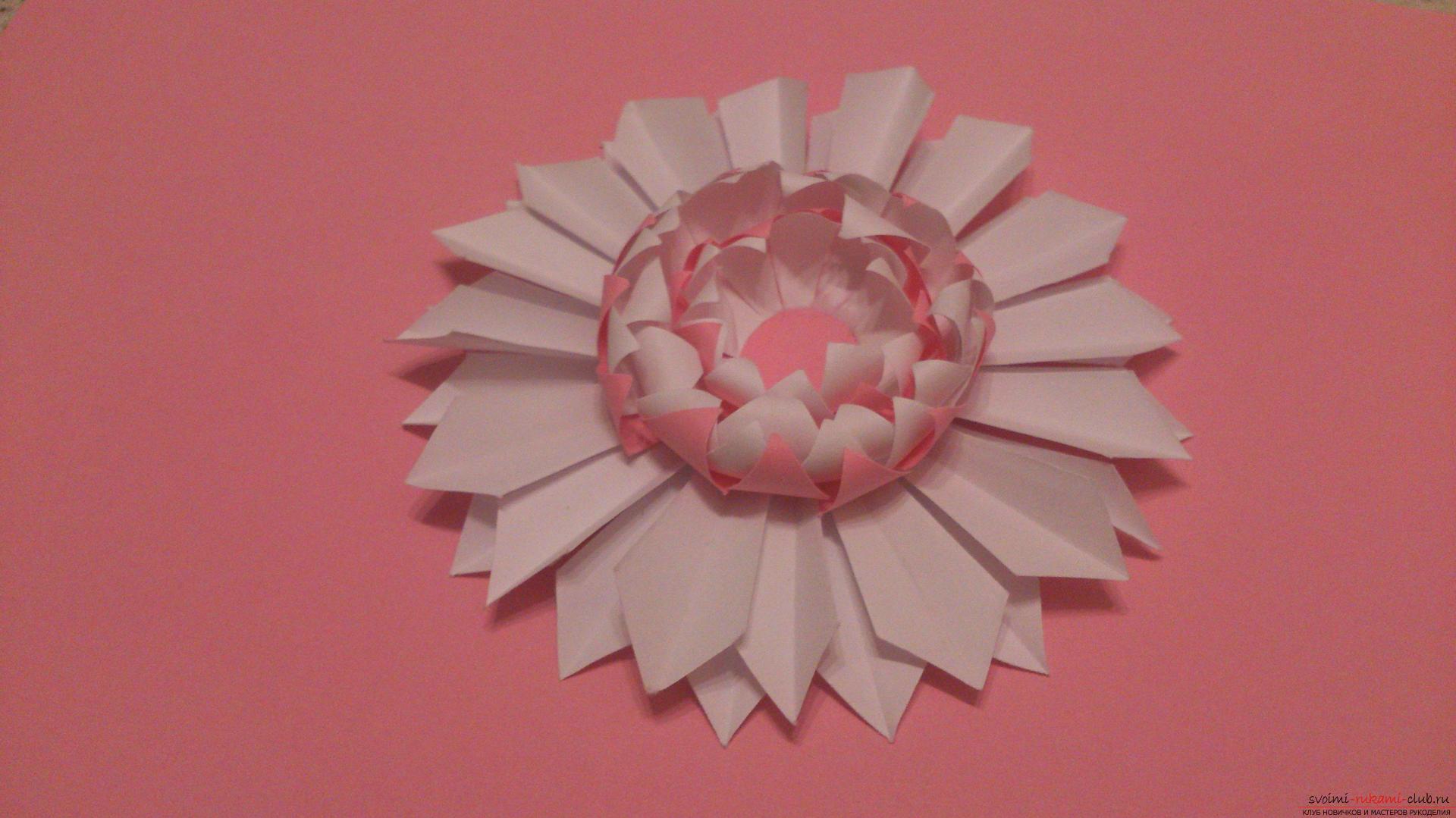 Поделки в технике бумагопластики очень разнообразны, предлагаем сделать картину из цветов, а цветы из бумаги изготовим своими руками.. Фото №15