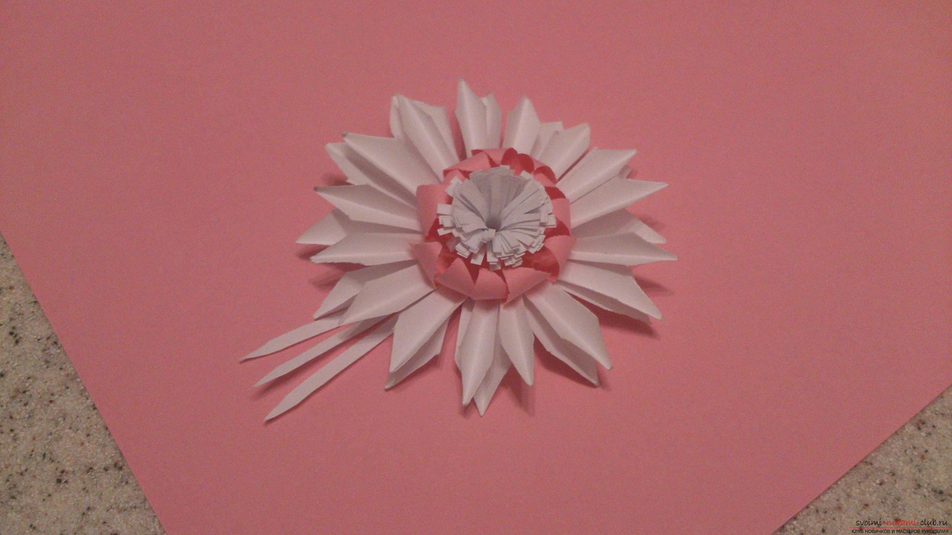 Поделки в технике бумагопластики очень разнообразны, предлагаем сделать картину из цветов, а цветы из бумаги изготовим своими руками.. Фото №26
