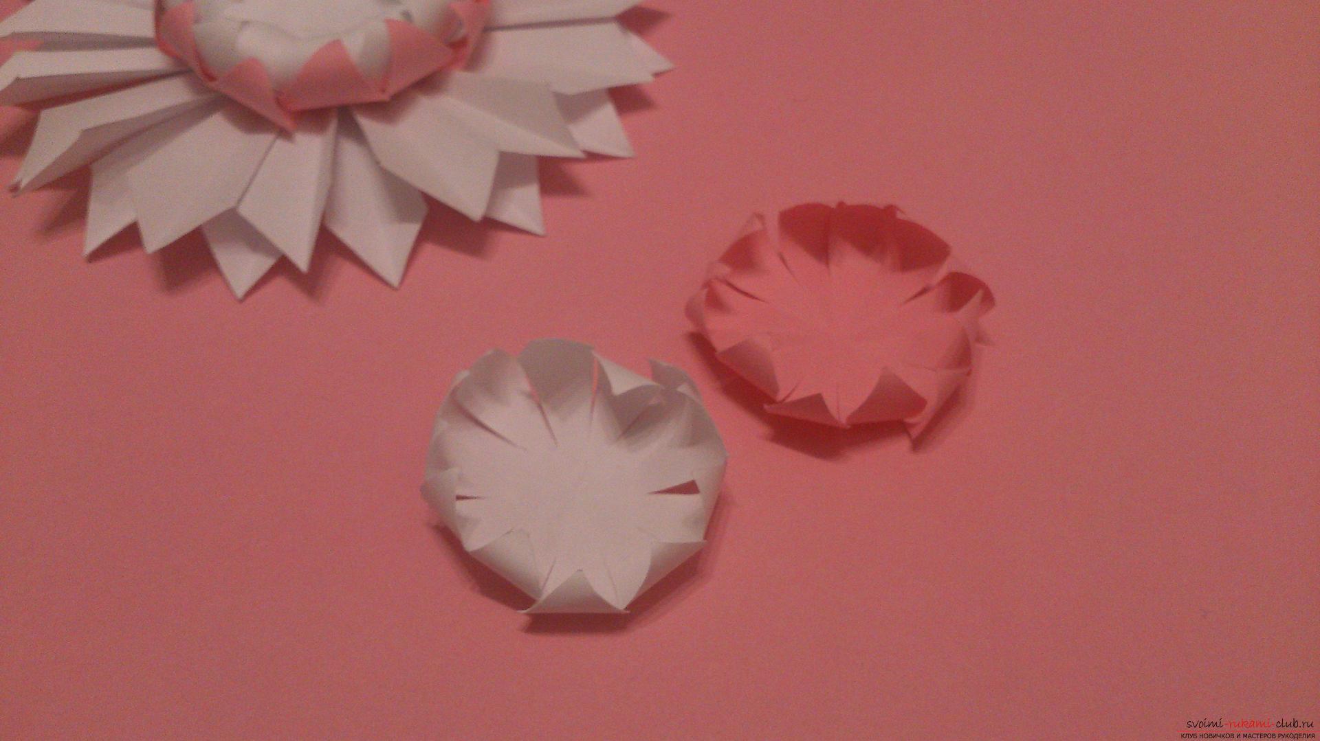 Поделки в технике бумагопластики очень разнообразны, предлагаем сделать картину из цветов, а цветы из бумаги изготовим своими руками.. Фото №13