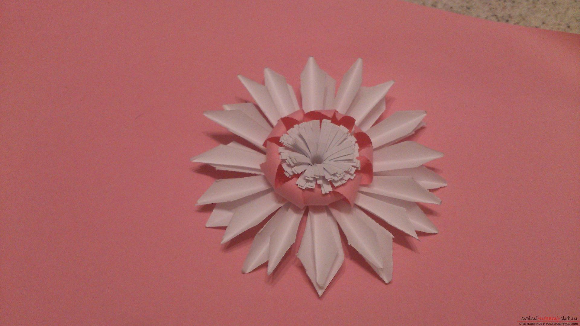 Поделки в технике бумагопластики очень разнообразны, предлагаем сделать картину из цветов, а цветы из бумаги изготовим своими руками.. Фото №19