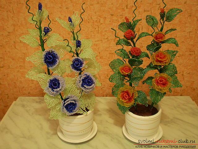 Цветок для начинающих из бисера Мужские Схемы 52