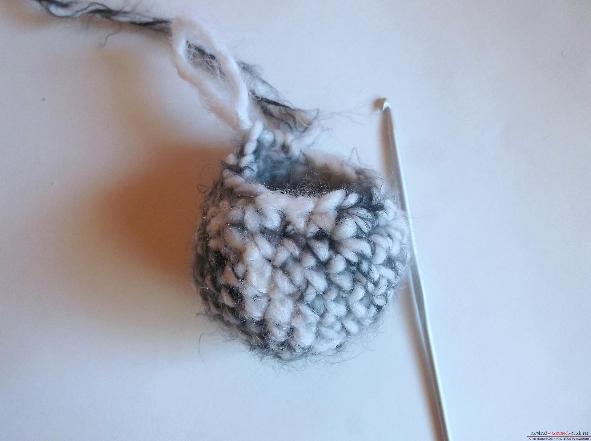 Фото к уроку по вязанию крючком котика. Фото №3