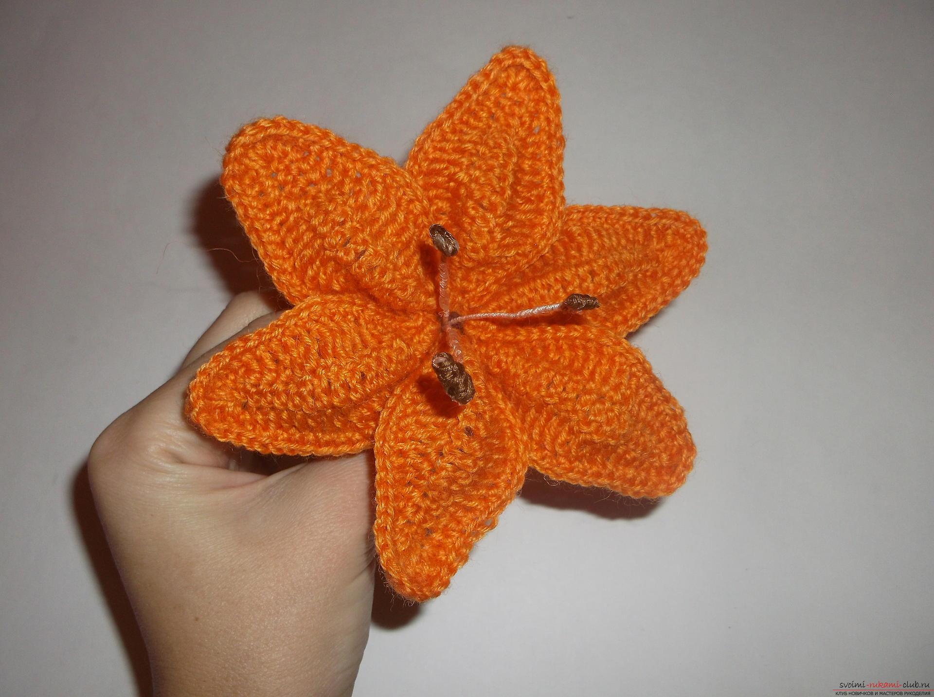 Фото к уроку по вязанию крючком лилии. Фото №9