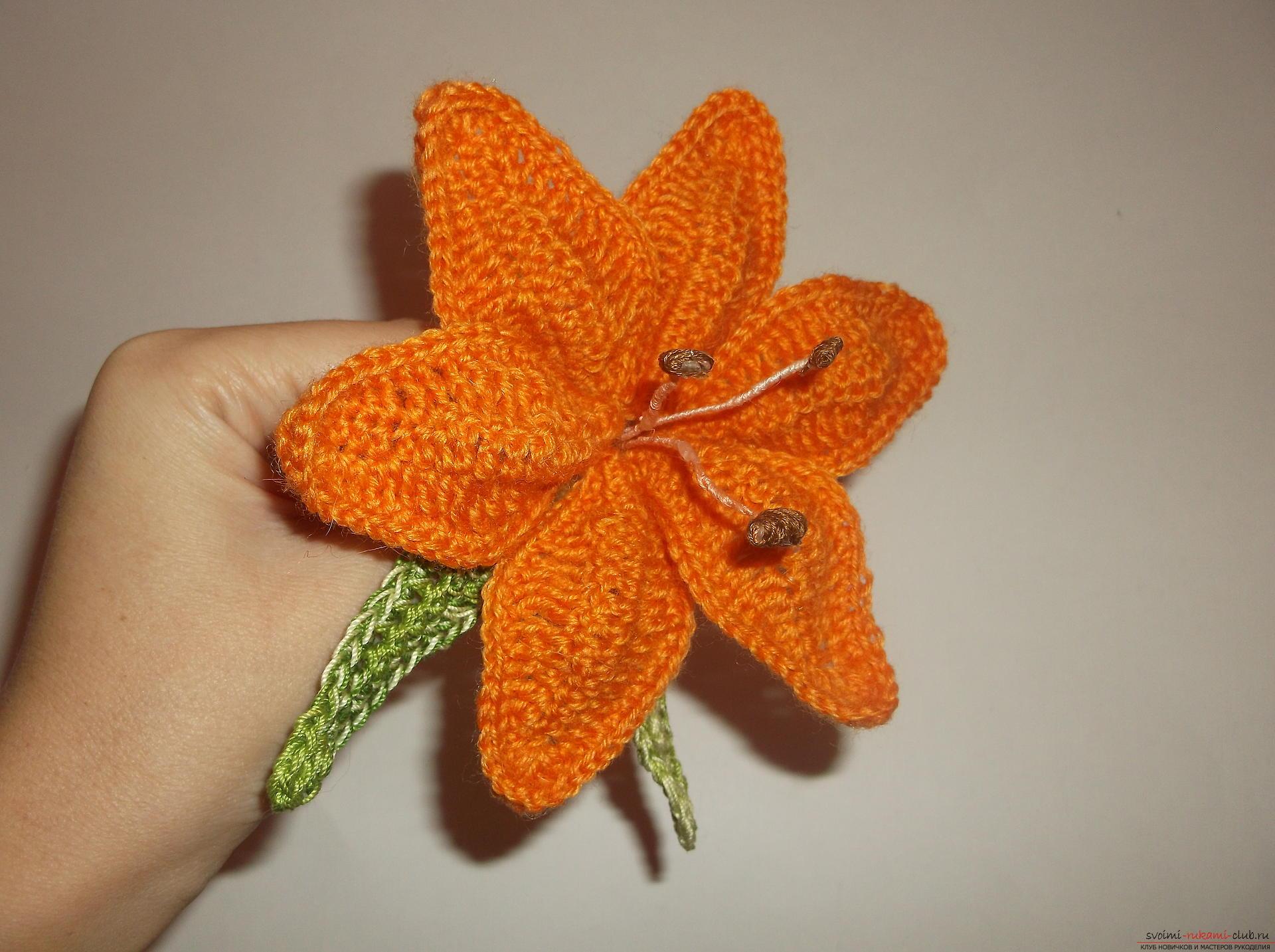 Вязание крючком для начинающих лилии