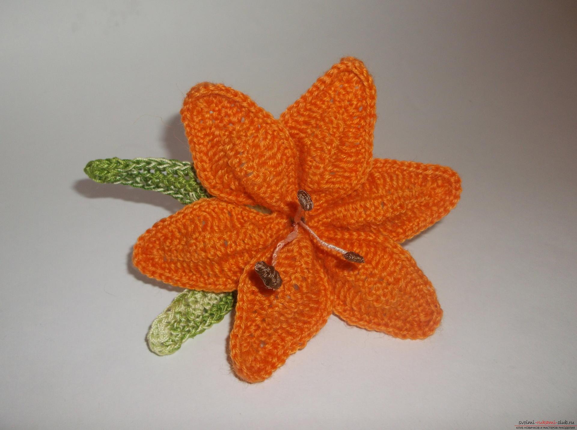 Описание вязание лилий крючком