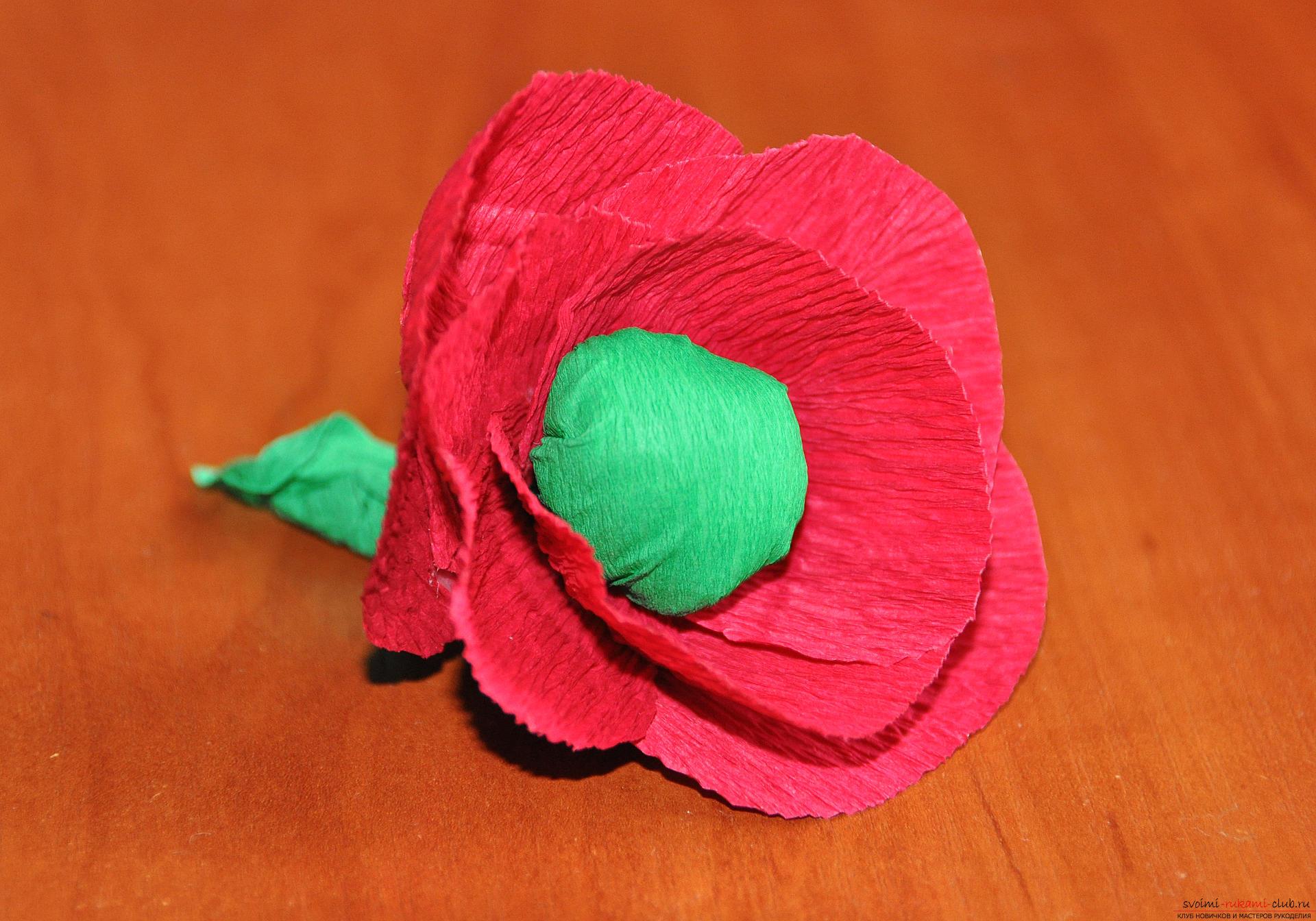Как сделать гвоздику из гофрированной бумаги фото