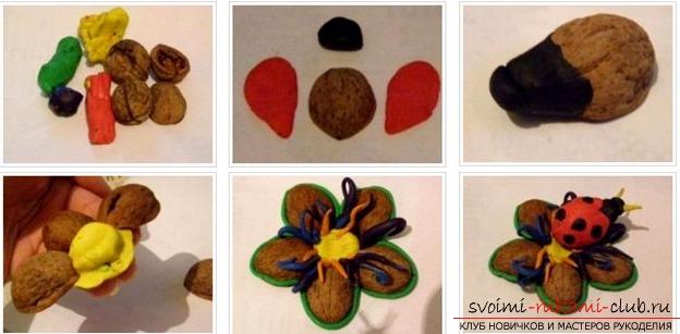 Поделки из скорлупы грецких орехов своими