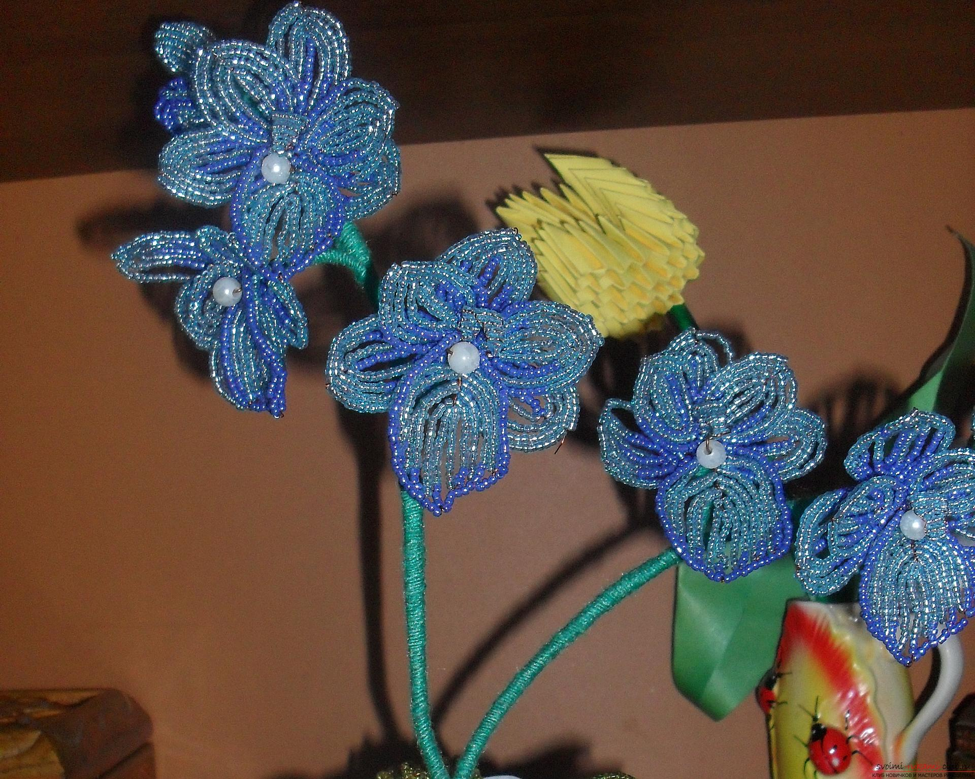 Школа ремонта мастер класс орхидеи для начинающих #12