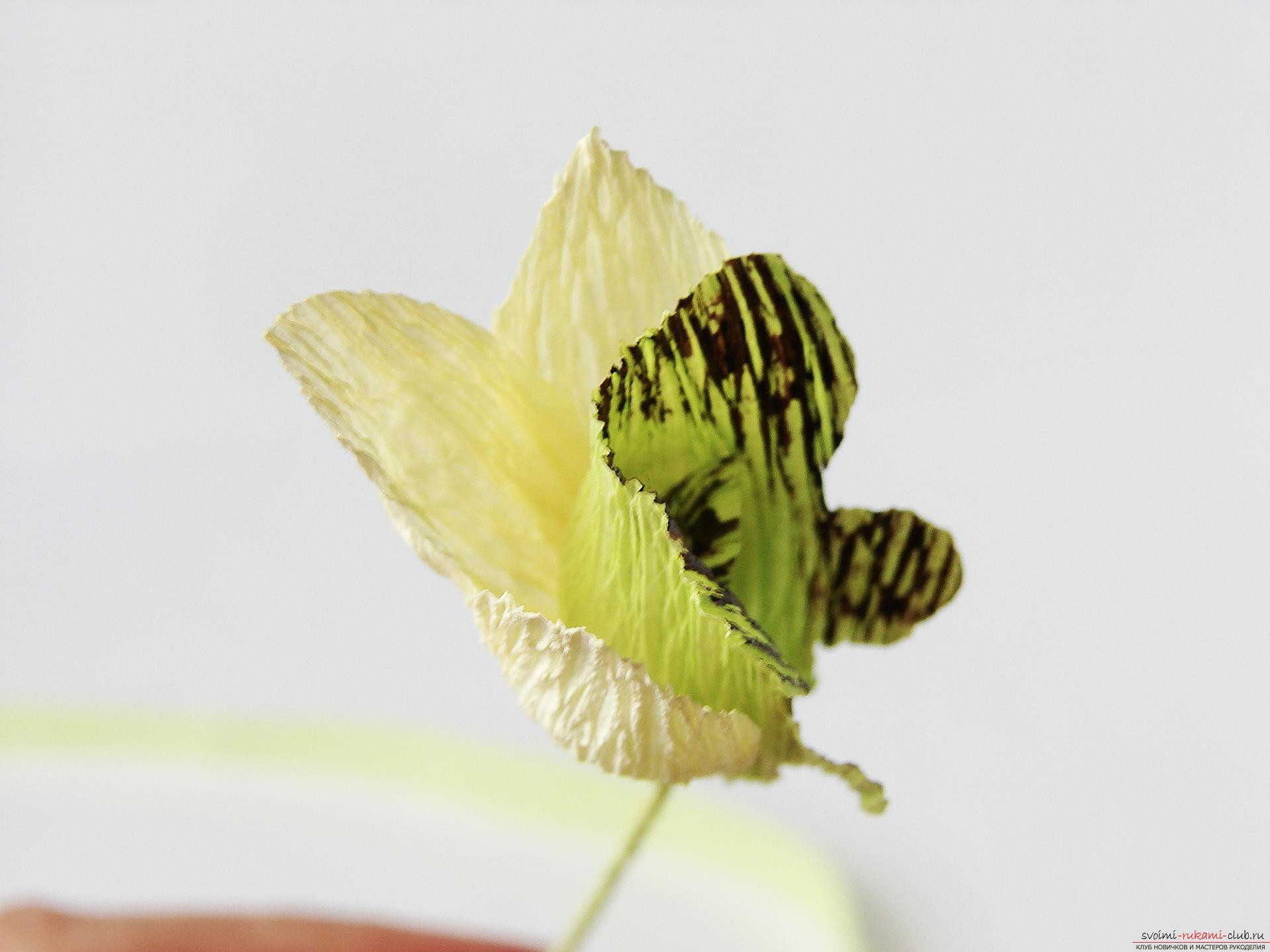 Этот мастер-класс расскажет как сделать своими руками из гофрированной бумаги прекрасную орхидею