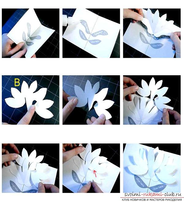 Объемные цветы своими руками на день рождения