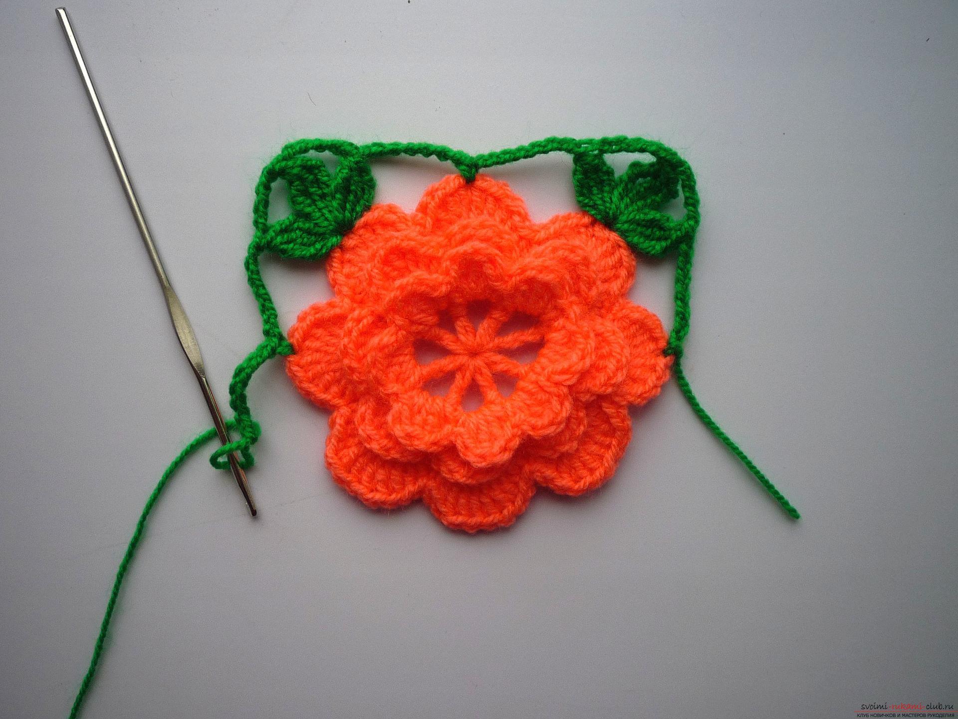 Мастер-класс с фото научит вязать симпатичные прихватки крючком с объемным цветком.. Фото №8