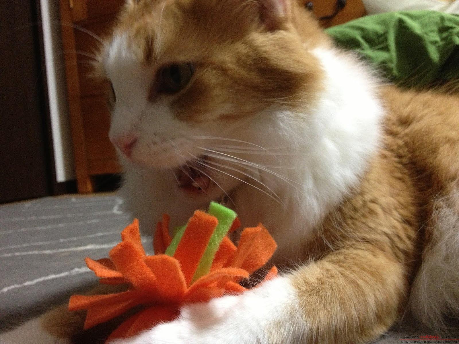 Изготавливаем игрушку – помпон для котят своими руками, мы предоставляем подробную инструкцию