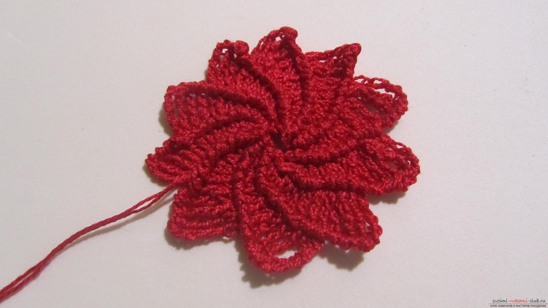 эта статья даст урок как вязать крючком цветы пуансеттии мастер