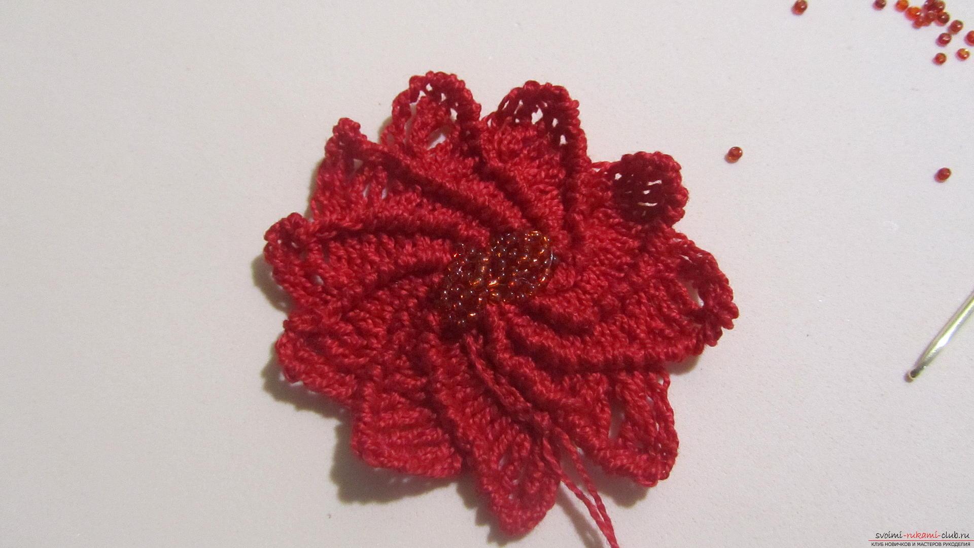Эта статья даст урок как вязать крючком цветы пуасенттии, мастер-класс с фотографиями.</p> </div> <p> Фото №19″/> Закрываем серединку цветка бисером.</p> <p><div style=