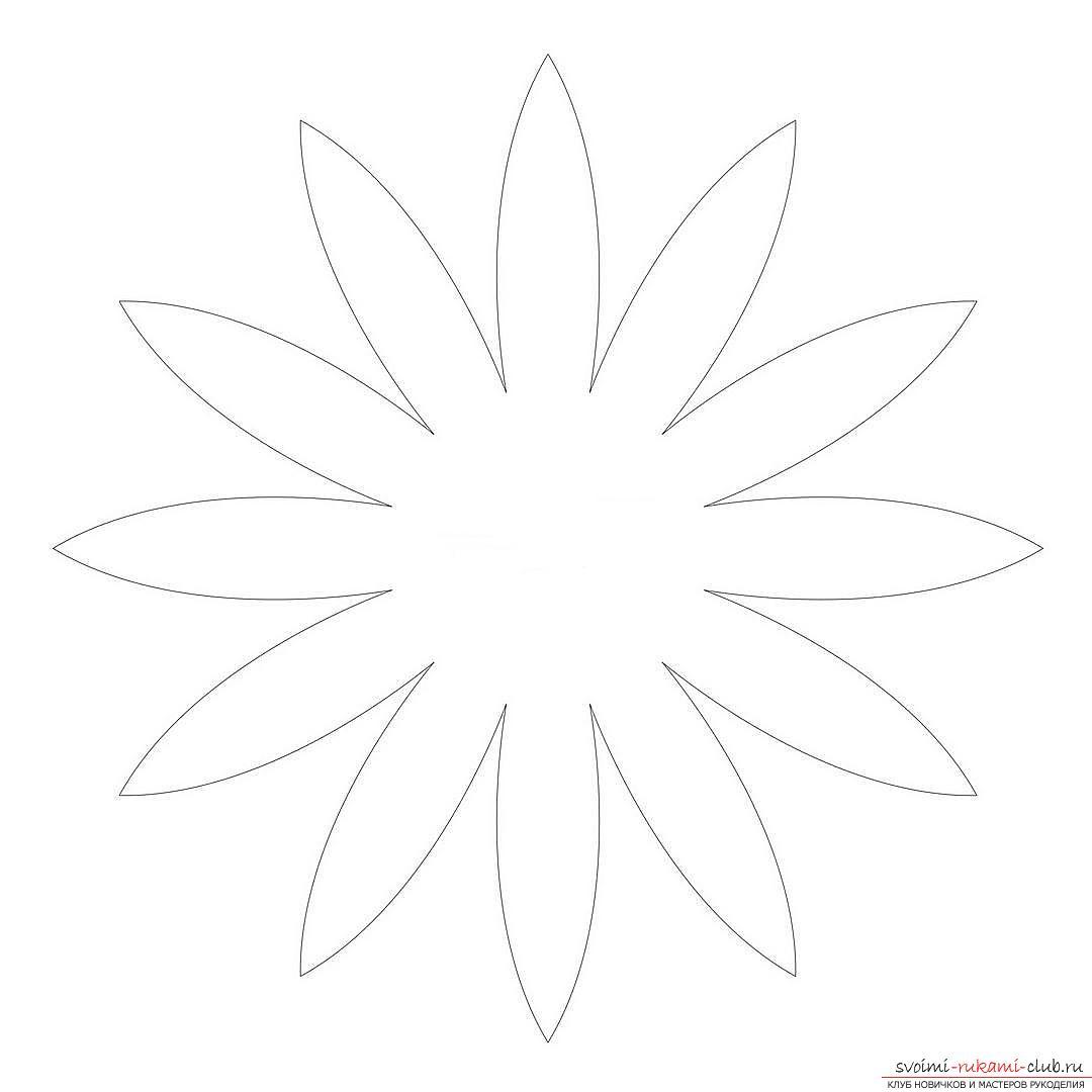 Шаблон ромашки для акции белый цветок выполнено
