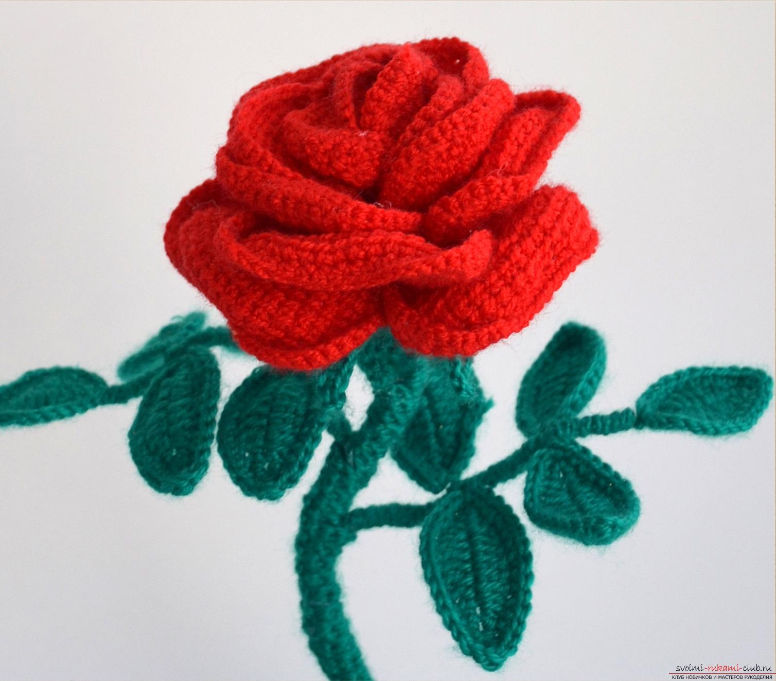 Вязание крючком роз мастер класс 71