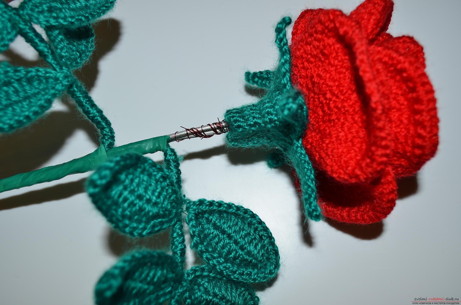Вязание крючком роз мастер класс 97