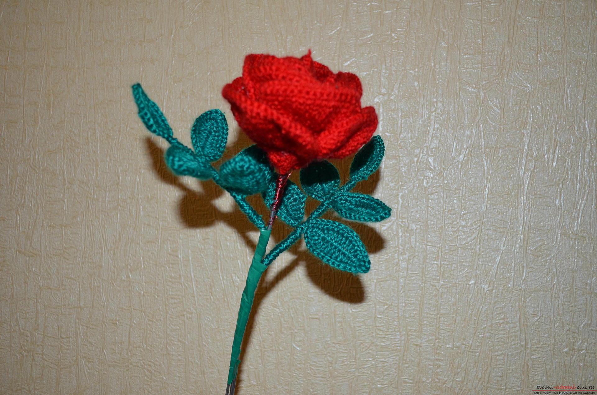 Вязание крючком роз мастер класс 32