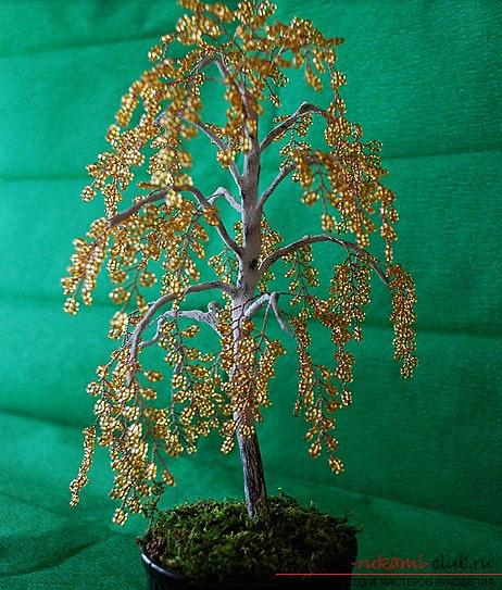 Дерево из бисера с разъяснением способа бисероплетения для начинающих.. Фото №9
