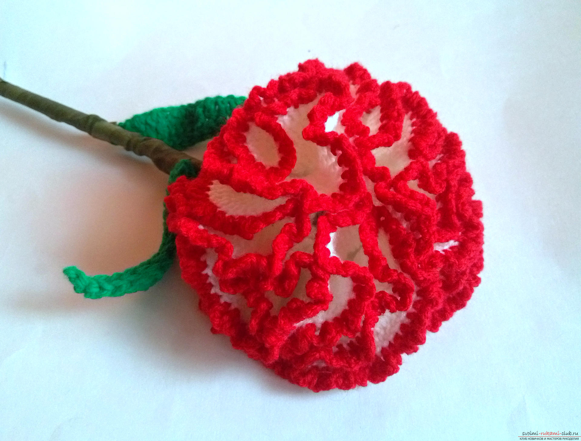 Цветы крючком схема самое интересное в блогах.