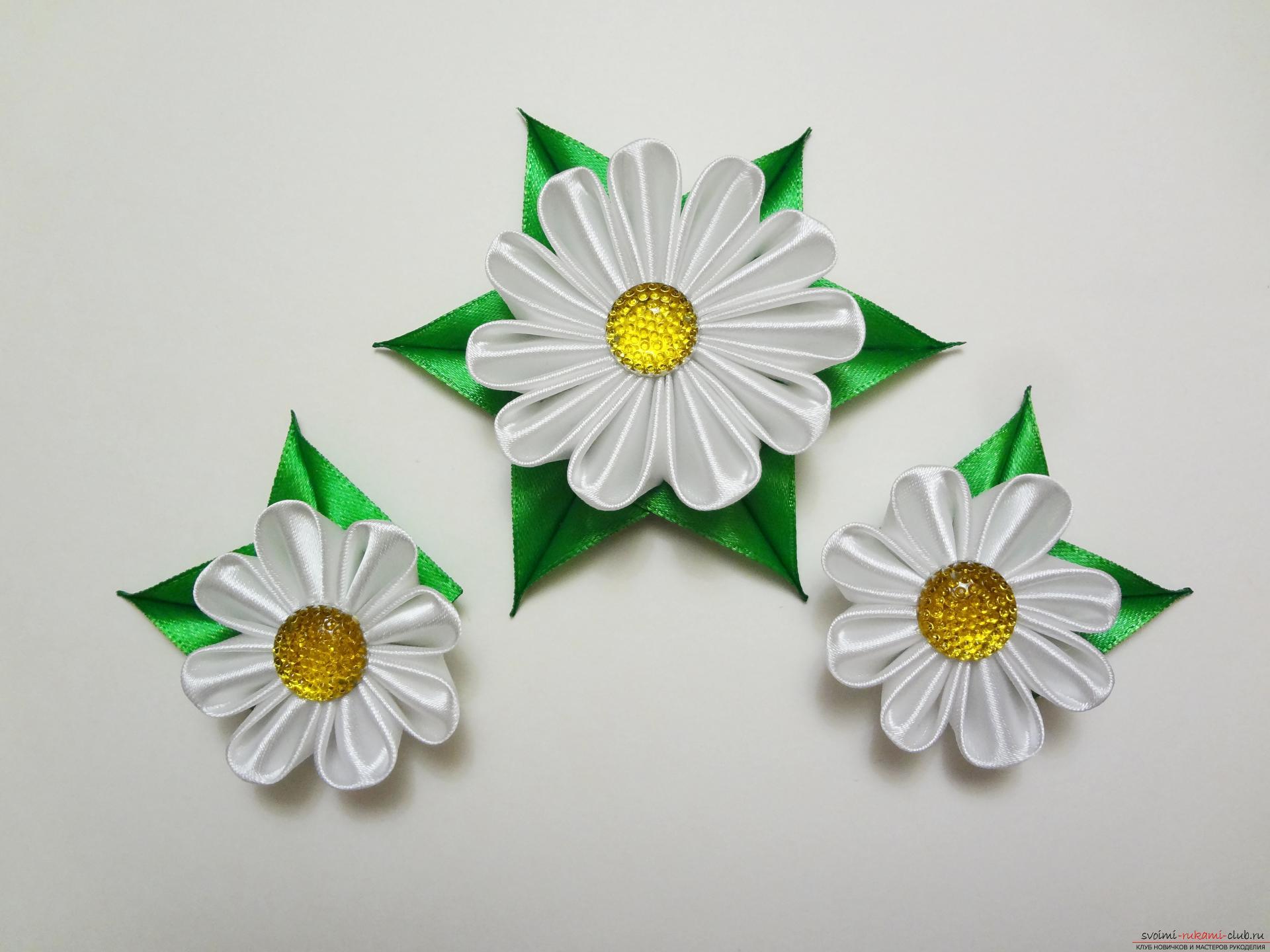 Маргаритки цветы из бумаги своими руками. Мастер-класс с