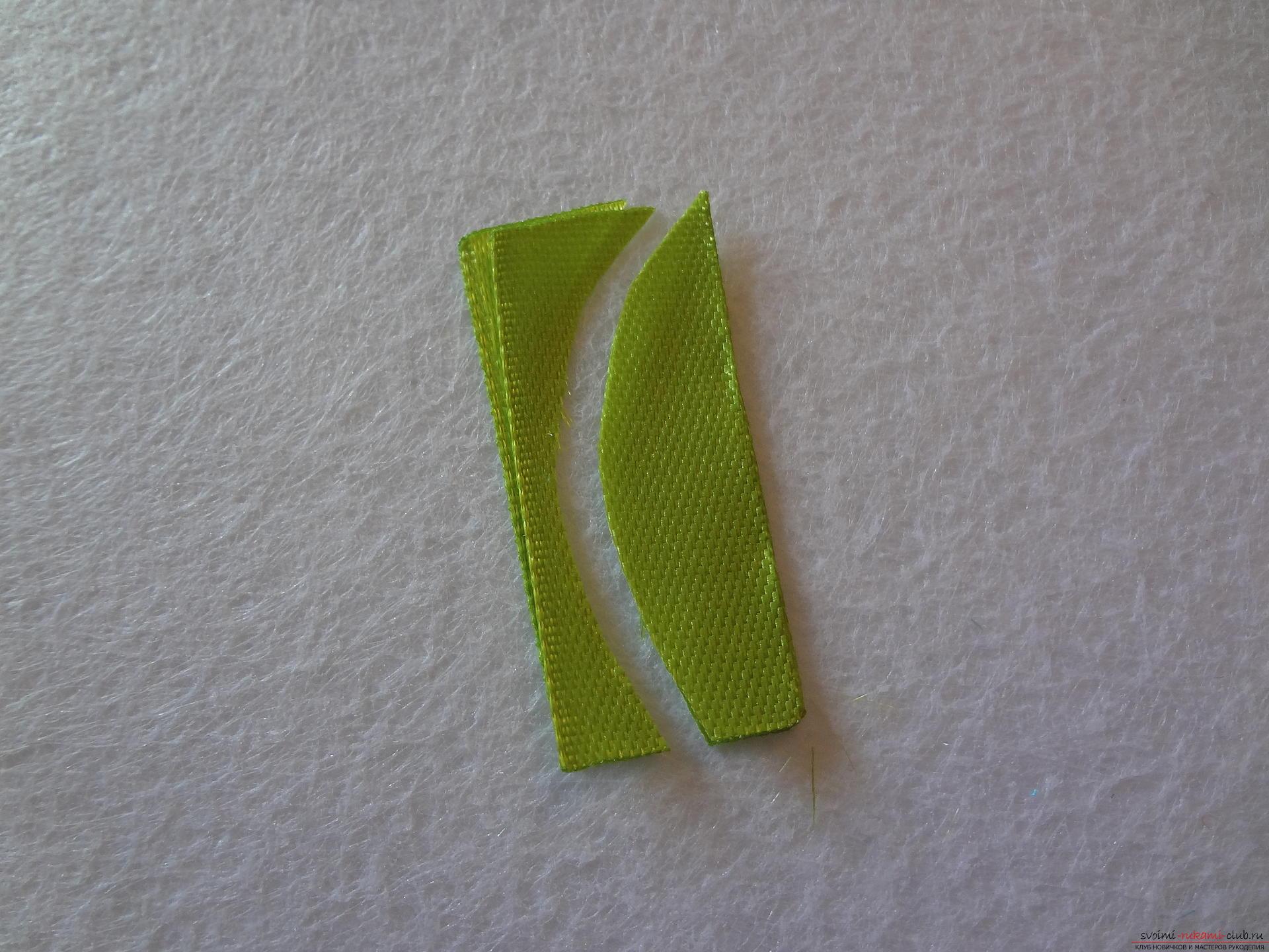 Как из тонкой ленты сделать листочки из