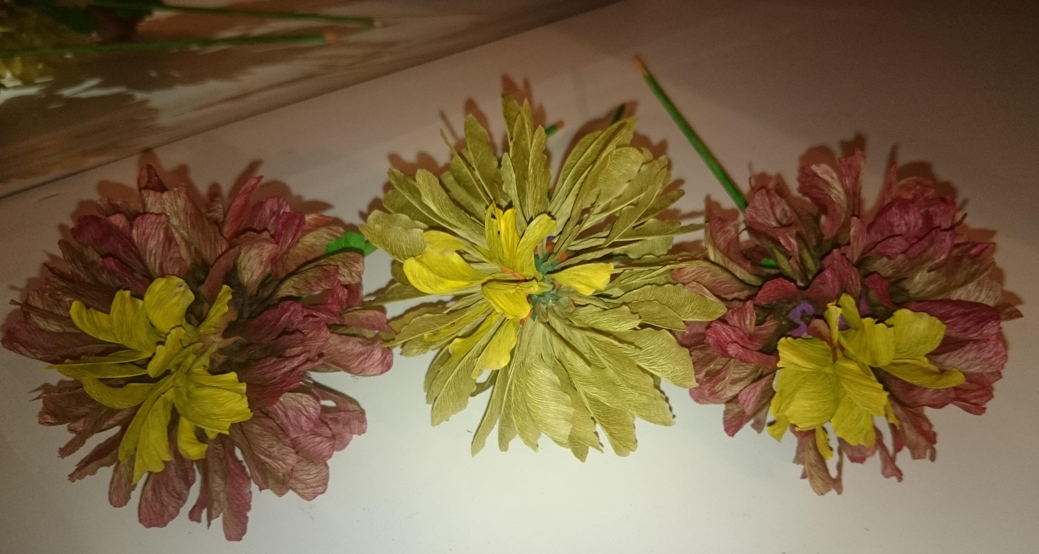 Поделки из семян цветы